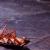 pest-control-service-cockroaches-kallangur